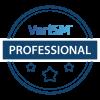 VeriSM_Professional